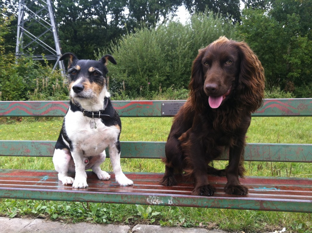 Taking a break!